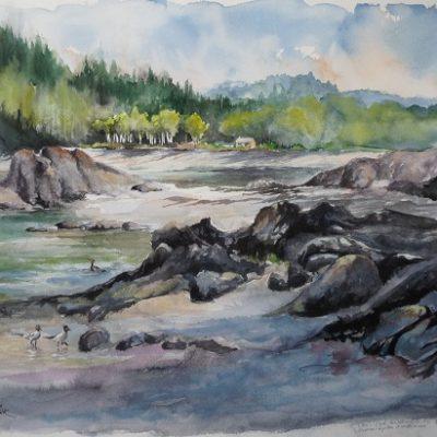 Parc National du Bic : l'Anse à l'Orignal cache bien des secrets, un site enchanteur, où les cormorans à aigrettes longent le rivage. Aquarelle (50 x 65 cm).