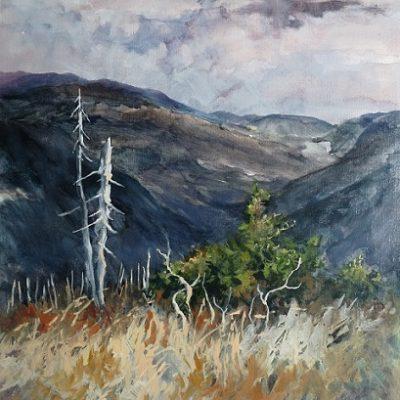 Mont Ernest Laforce : son sommet offre un panorama saisissant sur les sommets environnants. Le paysage porte encore les séquelles d'un ancien incendie. Huile sur toile (50 x 65 cm).