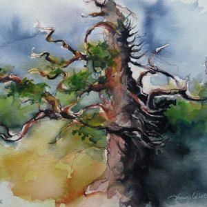Bignan : le chêne tricentenaire (aquarelle)