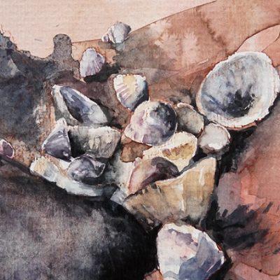 Trésors sur l'estran, aquarelle (22 x 14 cm)