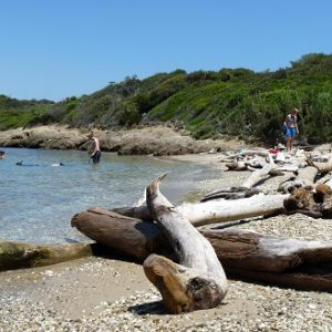 Île de Porquerolles, Cap Rousset