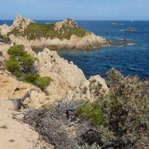 """Île de Porquerolles, le """"Petit Langoustier"""""""