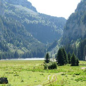 Hameau, tourbière et lac de Flaine