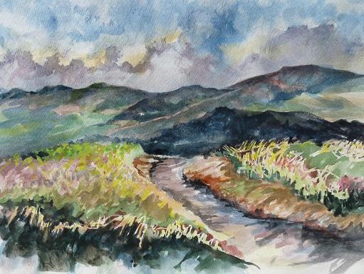 Les Monts Chic-Chocs. Aquarelle (40 x 32 cm).