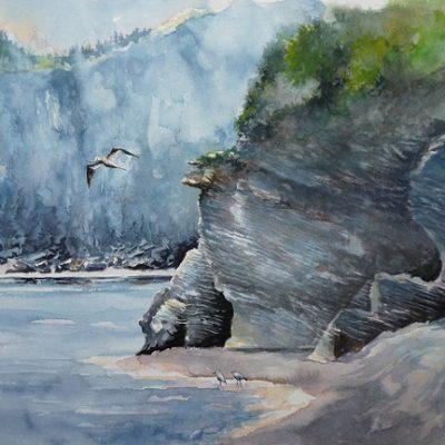 Plage du Cap Bon Ami. Scène sauvage d'un spectacle maritime où les phoques et les oiseaux sont en vedette... Aquarelle (50 x 65 cm).